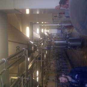 The fermenting line